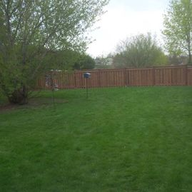 wood fencing with greenary
