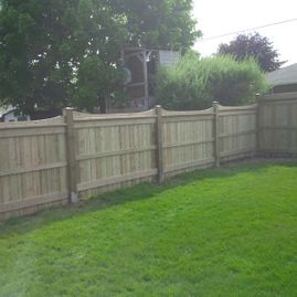 wood fencing with garden and plants